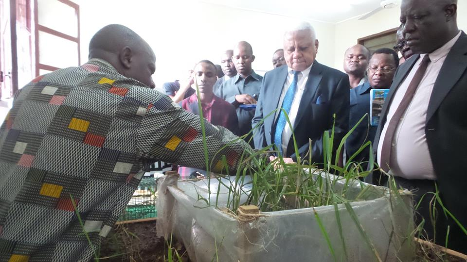 The Chairman of the SUA Council Hon.Mohamed Chande Othman (center) gets explanation from the Technologist Prof. Loth Mulungu about the Trap Barrier System (TBS) technology which is used to Control Rodent Pest species in irrigated rice crop production.