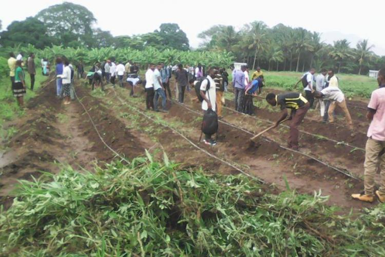 Students-from-Department-of-Crop-Science-and-Horticulture-Sokoine-University-of-Agriculture